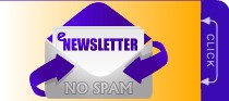 Subscribe to Go-Karts 'R' us: eNewsletter