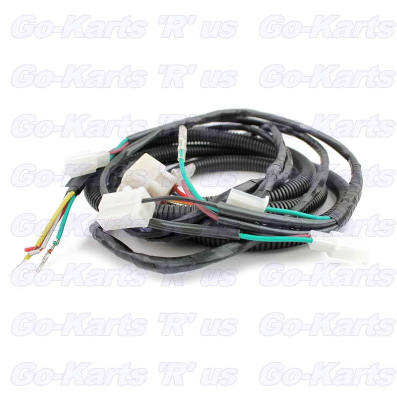 American SportWorks Part # 14742 : Harness, Main Wiring with Lights on