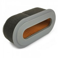 12373 : Air Cleaner Element(Dual) - 6.5hp with Coil