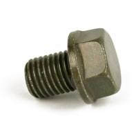 14313 : Bolt,  Drain/Fill Plug - 150cc