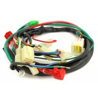 American SportWorks Part # 14739 : Harness, Main Wiring - 7150 on